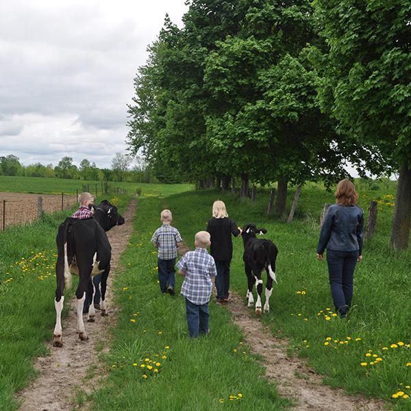 Animal Welfare Welfare