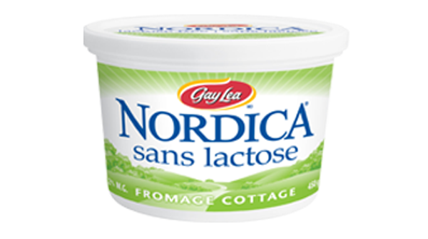 Photo of - Fromage cottage – sans lactose