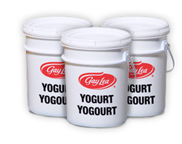 Photo of - Yogourt