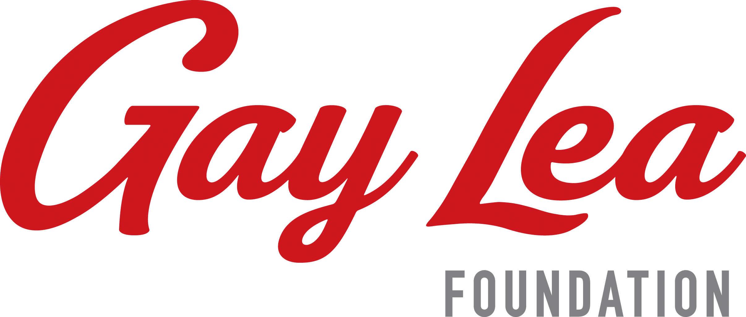 Photo for - Gay Lea Foundation announces first round of 2019 grants
